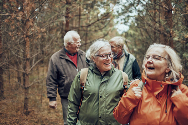 Seniors hiking through the forest