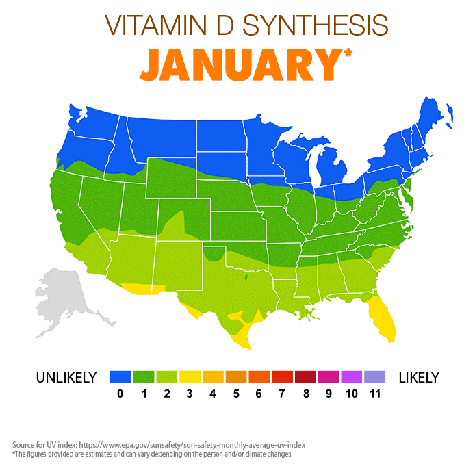 A map of vitamin D synthesis in January